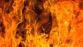 Blaze fire flame background Royalty Free Stock Photography