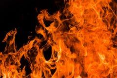 Blaze fire flame background Stock Image