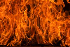 Blaze fire flame background and textured Stock Photography