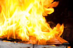 Blaze fire from flame. Royalty Free Stock Images