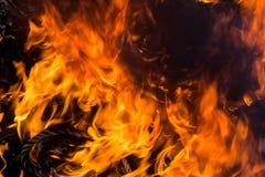 Blaze fire flame close up texture background. Stock Photos
