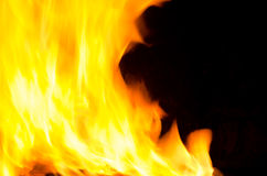 Blaze fire from flame. Royalty Free Stock Image