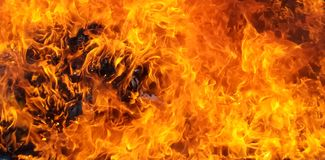 Free Blaze Fire Flame Texture Background Royalty Free Stock Image - 166256616