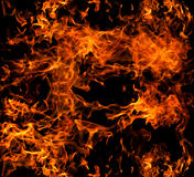 Blaze fire. Flame texture background Stock Photography