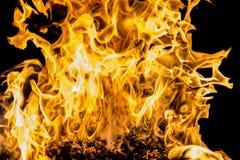 Blaze fire flame Stock Image