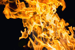 Blaze fire flame Royalty Free Stock Image