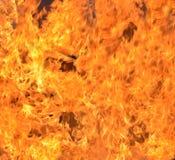 Blaze fire flame Royalty Free Stock Photos