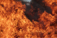 Blaze fire flame texture background Royalty Free Stock Photo