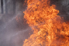 Blaze fire flame texture background Royalty Free Stock Images