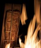 Blaze salmon Royalty Free Stock Photo