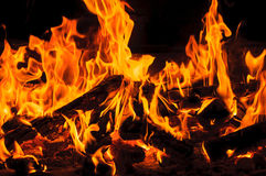 Blazing camp fire Stock Photo