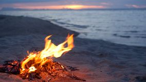 Blazing campfire on beach, summer evening. Bonfire in nature as background. Burning wood on white sand shore at sunset. stock footage