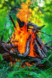 Blazing campfire coals Royalty Free Stock Photography