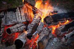 Blazing fire Stock Image