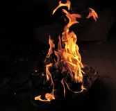 The blazing fire. The fire on woods looks too blazing and amazing taking different shapes royalty free stock photo