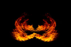 Blazing flames on black background Stock Image