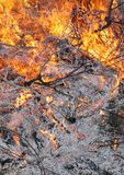 Blazing ground. Ground fire showing embers, ash, and debris Stock Photography