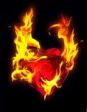 Blazing heart Stock Photos