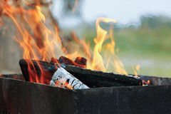 Blazing logs. Billet fire for barbecue Stock Image