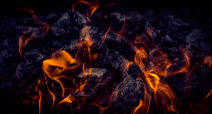 Blazing logs stock images