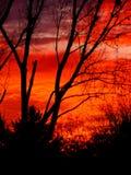 Blazing November Sunset Stock Photos