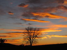 Blazing Sunset with Rural Landscape Royalty Free Stock Photos