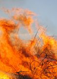 Blazing wildfire. Close-up of a large wildfire burning brush and debris stock photos