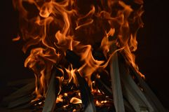 Blazing Wood Fire Stock Photography