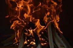 Blazing wood fire