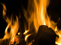 Blazing wood fire. Flames rising from a blazing, open wood fire at night Royalty Free Stock Image