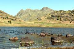 Blea il Tarn nel parco nazionale del distretto del lago un giorno di estate luminoso Fotografia Stock Libera da Diritti