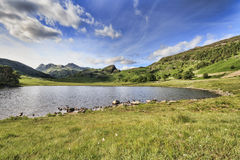 Blea Tarn Royalty Free Stock Images