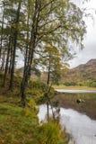 Blea Tarn, Lake District. Royalty Free Stock Images