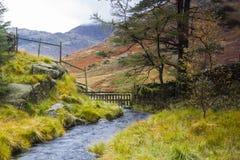 Blea Tarn, Lake District. Royalty Free Stock Photo