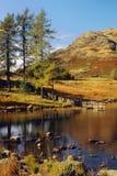 Blea Tarn, Langdale, Cumbria lizenzfreies stockfoto