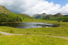 Blea Tarn and Langdale Pikes Lake District Cumbria England UK between Great Langdale and Little Langdale Stock Photo