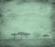 Bleached image of a trees Royalty Free Stock Photo