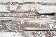 Bleached sandy planks and text space. Close-up of rough beach planks stock photos
