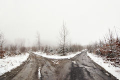 Bleak. Shot of the forest roads - branching roads - and misty day stock photography