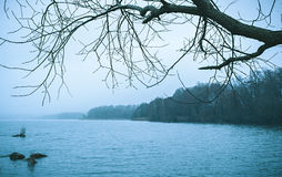 Bleak cold winter lake landscape Royalty Free Stock Image