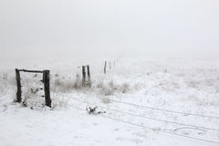 Bleak - pastures in the winter and fog Royalty Free Stock Photography