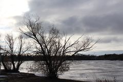 Bleak winter scene at Wascana Lake Regina Canada. Stark winter scene at frozen lake royalty free stock image