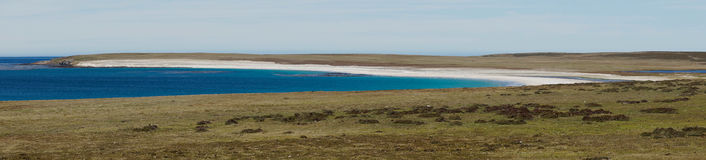 Bleaker Island - Falkland Islands Royalty Free Stock Images