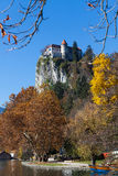 Bled Castle  built on top of a cliff overlooking Royalty Free Stock Photos