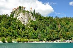 Bled Castle. In slovenian resort Stock Images