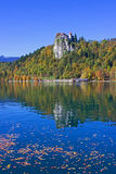 Bled Castle View  Stock Image