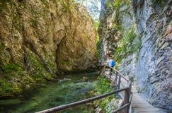 Bled gorge, Blejski vintgar, Slovenia Stock Images
