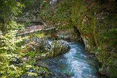 Bled gorge, Blejski vintgar, Slovenia Royalty Free Stock Photography