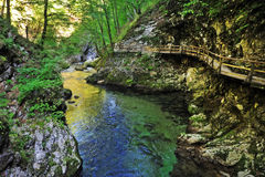 Bled gorge Stock Image
