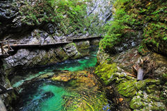 Bled gorge Stock Photography